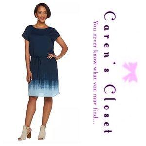 Hailston Blue Ombré Drawstring Cap Sleeve Dress
